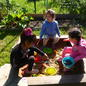 Gardening colony experience visitation of children!